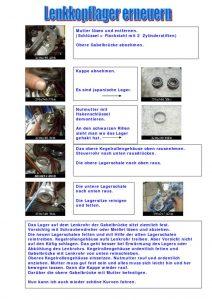 thumbnail of lenkkopflager